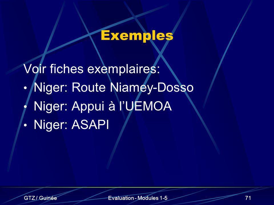 GTZ / GuinéeEvaluation - Modules 1-571 Exemples Voir fiches exemplaires: Niger: Route Niamey-Dosso Niger: Appui à lUEMOA Niger: ASAPI