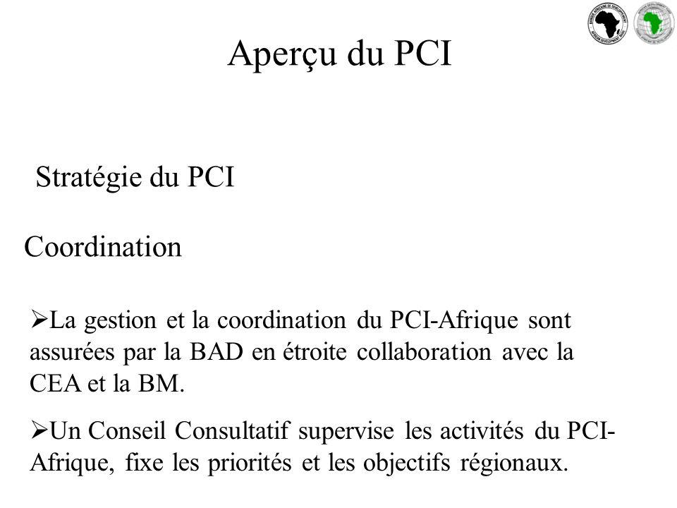 Stratégie du PCI Coordination La gestion et la coordination du PCI-Afrique sont assurées par la BAD en étroite collaboration avec la CEA et la BM.