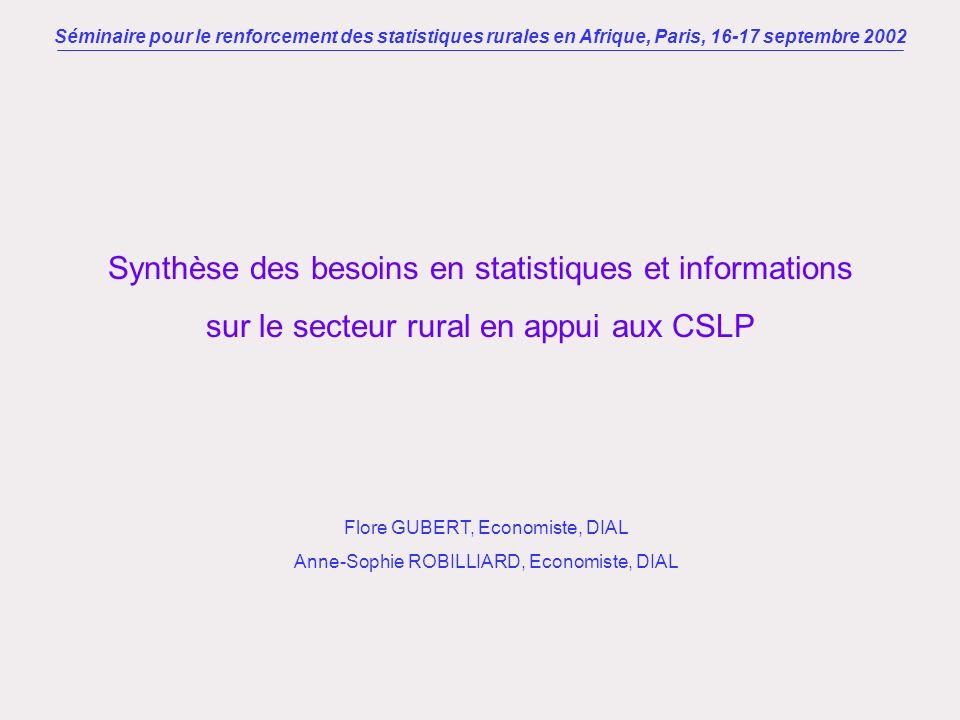 Synthèse des besoins en statistiques et informations sur le secteur rural en appui aux CSLP Séminaire pour le renforcement des statistiques rurales en