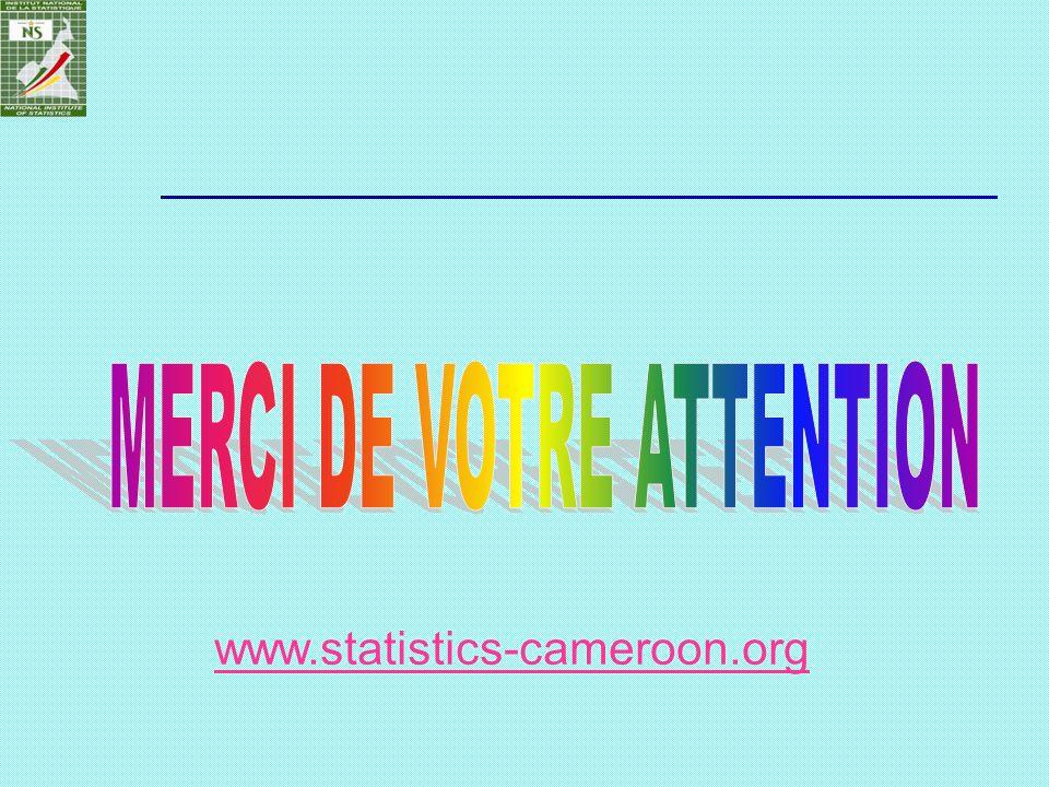 www.statistics-cameroon.org