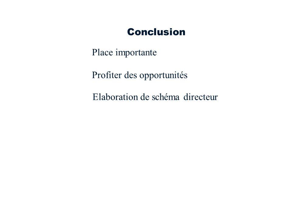 Conclusion Place importante Profiter des opportunités Elaboration de schéma directeur