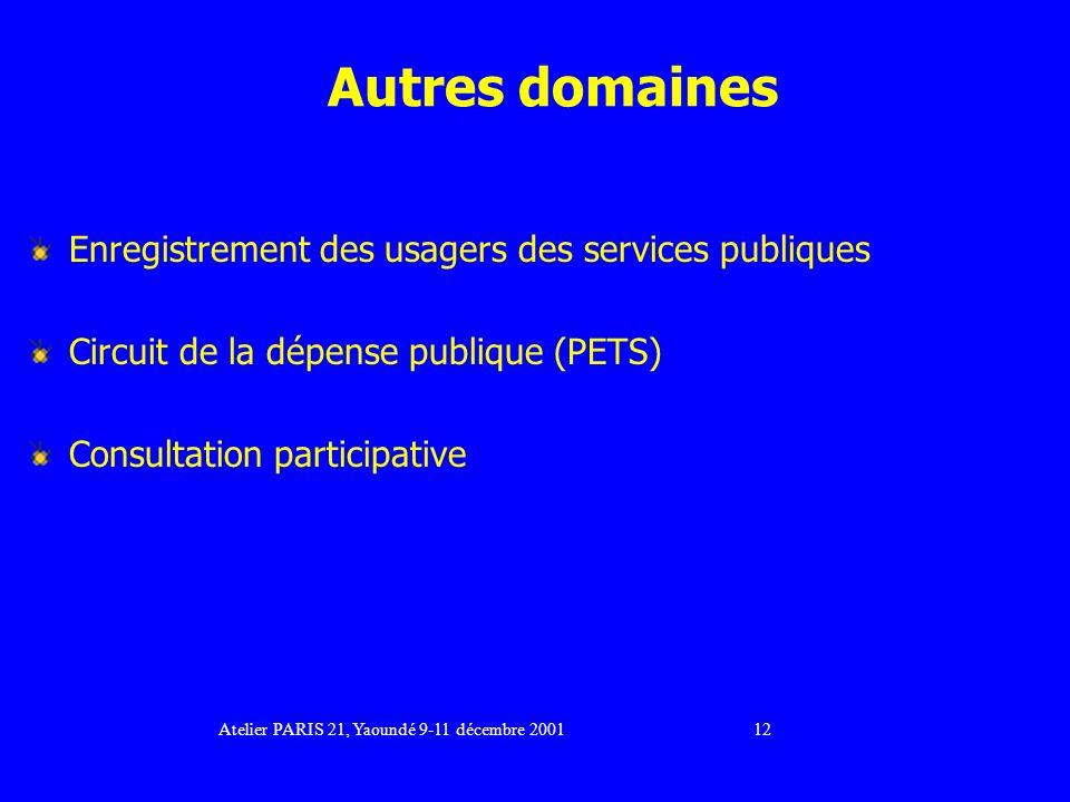 Autres domaines Enregistrement des usagers des services publiques Circuit de la dépense publique (PETS) Consultation participative Atelier PARIS 21, Yaoundé 9-11 décembre 2001 12