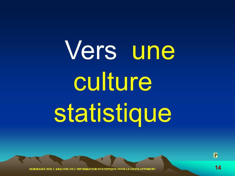 SEMINAIRE SUR LANALYSE DE LINFORMATION STATISTIQUE POUR LE DEVELOPPEMENT 14 Vers une culture statistique