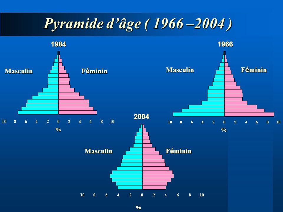 Pyramide dâge ( 1966 –2004 ) 2004 19661984 F é minin Masculin Masculin Masculin% % %