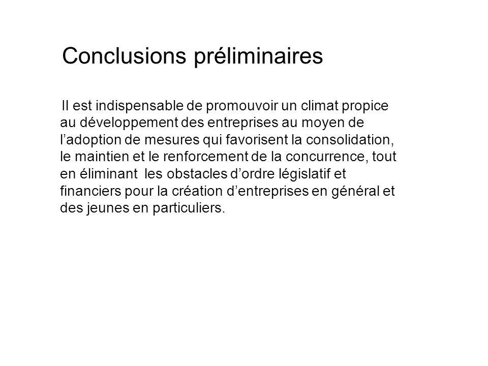 Conclusions préliminaires Il est indispensable de promouvoir un climat propice au développement des entreprises au moyen de ladoption de mesures qui f