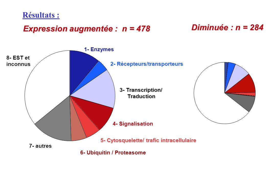 1- Enzymes 2- Récepteurs/transporteurs 3- Transcription/ Traduction Traduction 4- Signalisation 5- Cytosquelette/ trafic intracellulaire 6- Ubiquitin