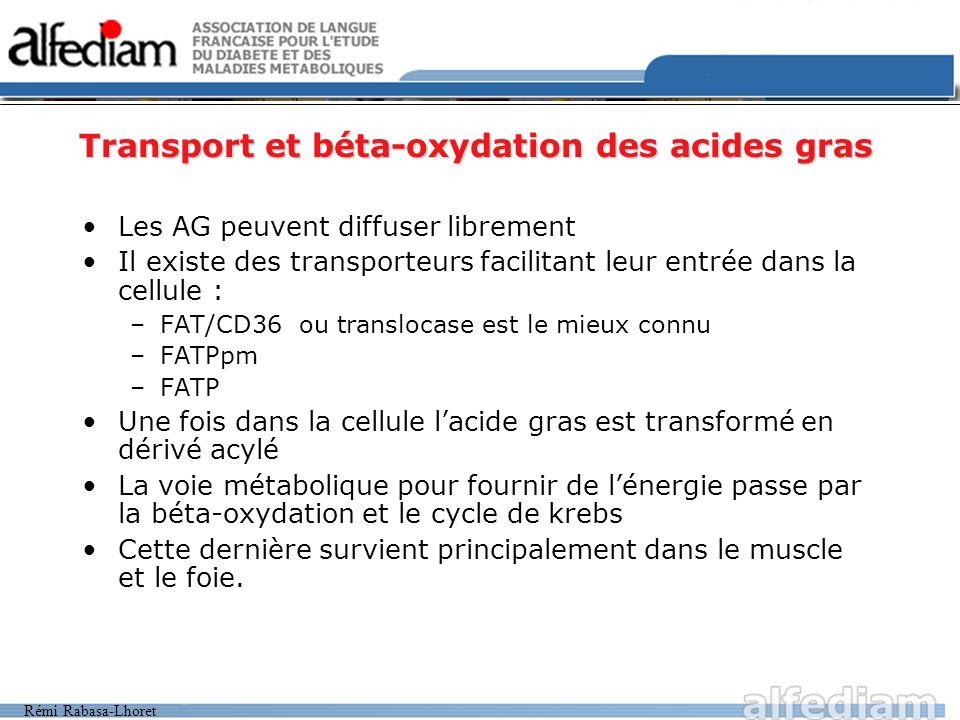 Rémi Rabasa-Lhoret Transport et béta-oxydation des acides gras Les AG peuvent diffuser librement Il existe des transporteurs facilitant leur entrée da