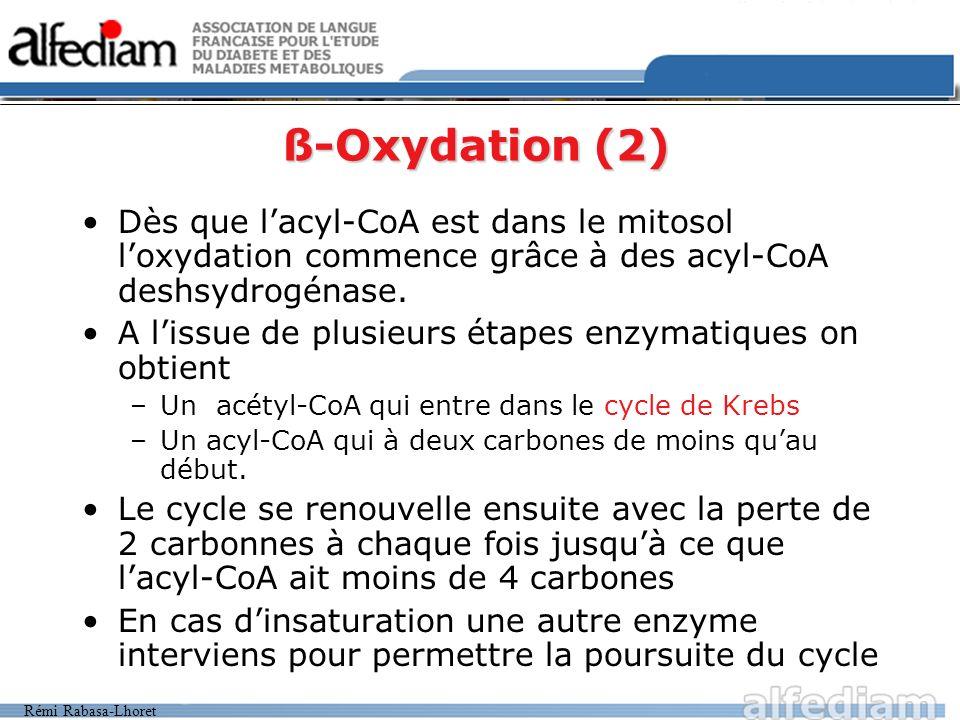 Rémi Rabasa-Lhoret ß-Oxydation (2) Dès que lacyl-CoA est dans le mitosol loxydation commence grâce à des acyl-CoA deshsydrogénase. A lissue de plusieu