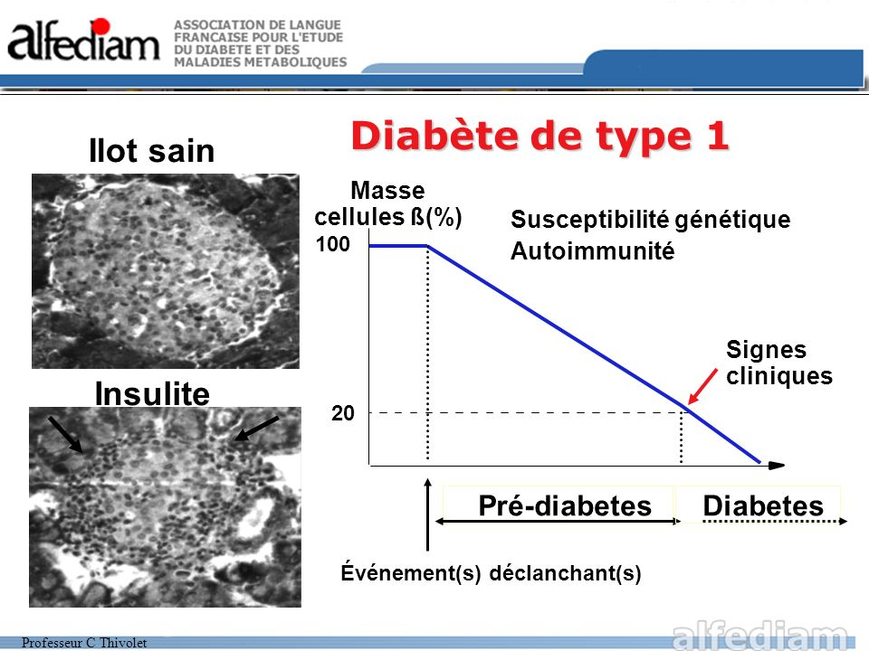 Professeur C Thivolet Diabète de type 1 Événement(s) déclanchant(s) Masse cellules ß(%) 100 20 Pré-diabetes Autoimmunité Signes cliniques Insulite Sus