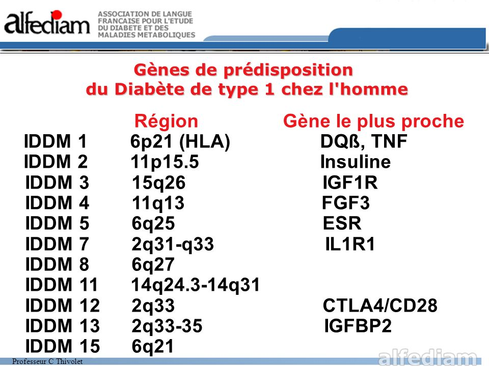 Professeur C Thivolet Gènes de prédisposition du Diabète de type 1 chez l'homme Région Gène le plus proche IDDM 1 6p21 (HLA) DQß, TNF IDDM 2 11p15.5 I