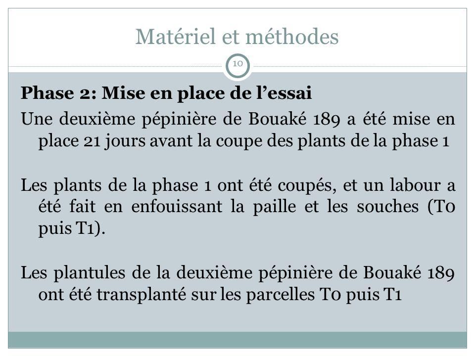 Matériel et méthodes Phase 2: Mise en place de lessai Une deuxième pépinière de Bouaké 189 a été mise en place 21 jours avant la coupe des plants de la phase 1 Les plants de la phase 1 ont été coupés, et un labour a été fait en enfouissant la paille et les souches (T0 puis T1).