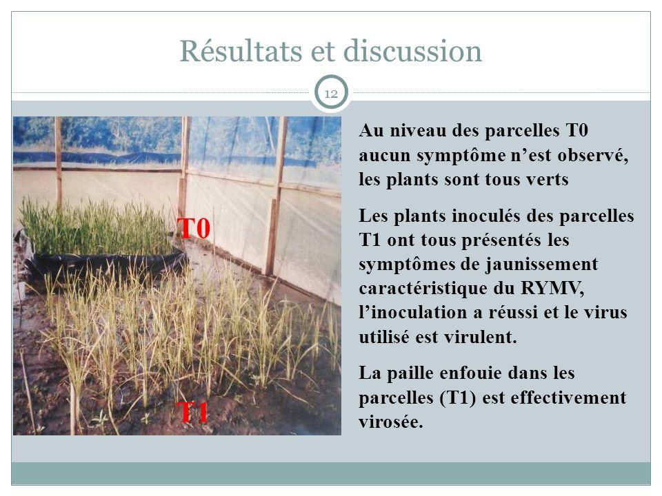 Résultats et discussion Au niveau des parcelles T0 aucun symptôme nest observé, les plants sont tous verts Les plants inoculés des parcelles T1 ont tous présentés les symptômes de jaunissement caractéristique du RYMV, linoculation a réussi et le virus utilisé est virulent.