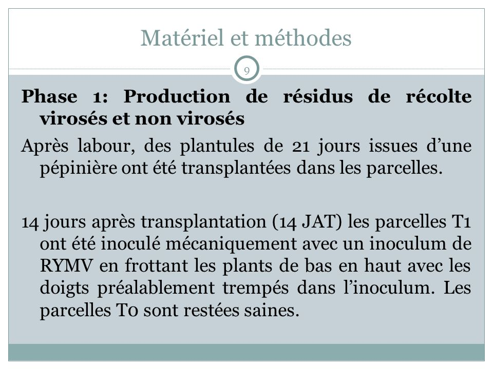Matériel et méthodes Phase 1: Production de résidus de récolte virosés et non virosés Après labour, des plantules de 21 jours issues dune pépinière ont été transplantées dans les parcelles.