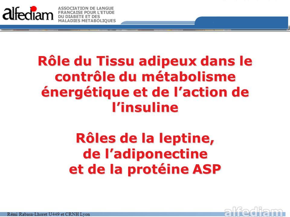 Rémi Rabasa-Lhoret U449 et CRNH Lyon Rôle du Tissu adipeux dans le contrôle du métabolisme énergétique et de laction de linsuline Rôles de la leptine,