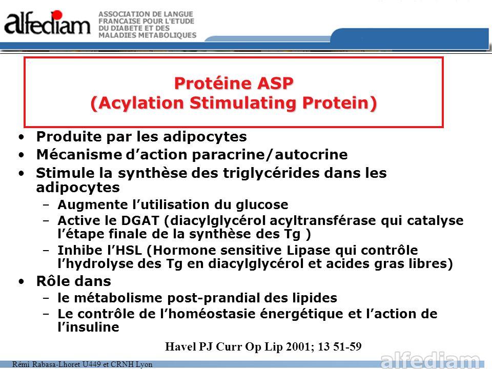 Rémi Rabasa-Lhoret U449 et CRNH Lyon Produite par les adipocytes Mécanisme daction paracrine/autocrine Stimule la synthèse des triglycérides dans les