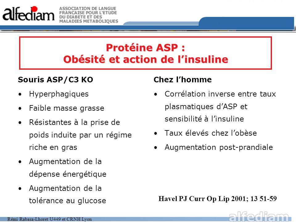 Rémi Rabasa-Lhoret U449 et CRNH Lyon Souris ASP/C3 KO Hyperphagiques Faible masse grasse Résistantes à la prise de poids induite par un régime riche e