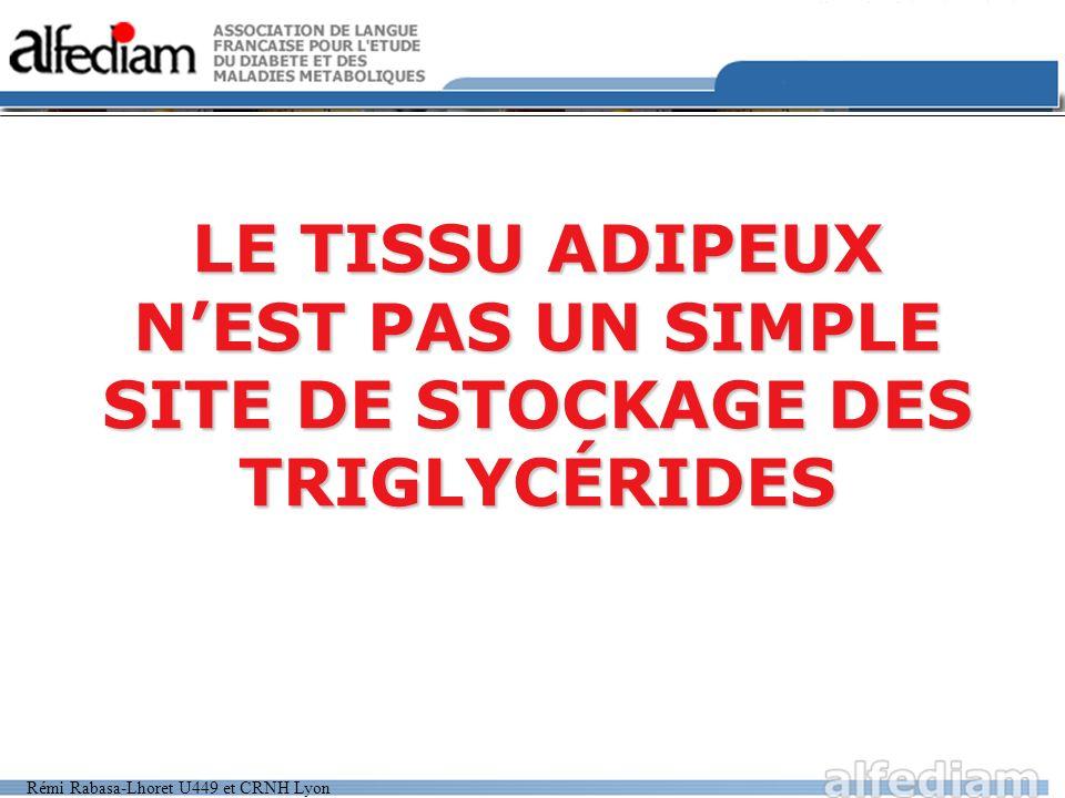 Rémi Rabasa-Lhoret U449 et CRNH Lyon LE TISSU ADIPEUX NEST PAS UN SIMPLE SITE DE STOCKAGE DES TRIGLYCÉRIDES