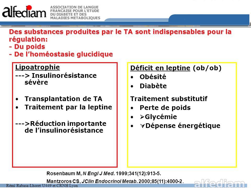 Rémi Rabasa-Lhoret U449 et CRNH Lyon Des substances produites par le TA sont indispensables pour la régulation: - Du poids - De lhoméostasie glucidiqu