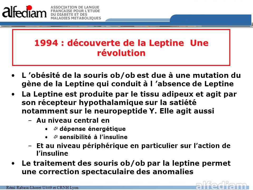Rémi Rabasa-Lhoret U449 et CRNH Lyon 1994 : découverte de la Leptine Une révolution L obésité de la souris ob/ob est due à une mutation du gène de la