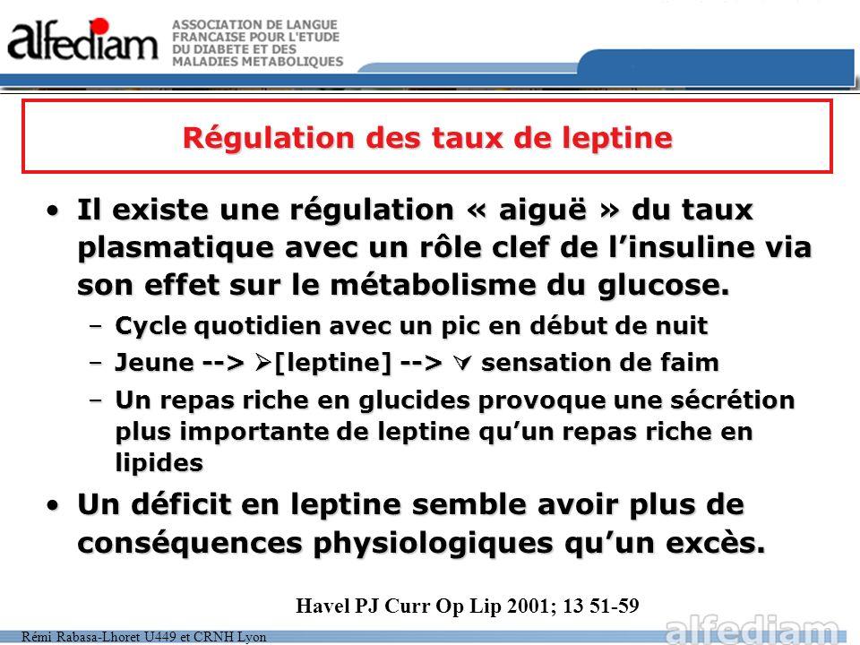 Rémi Rabasa-Lhoret U449 et CRNH Lyon Régulation des taux de leptine Il existe une régulation « aiguë » du taux plasmatique avec un rôle clef de linsul