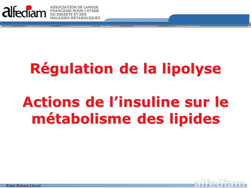 Rémi Rabasa-Lhoret Régulation de la lipolyse Actions de linsuline sur le métabolisme des lipides