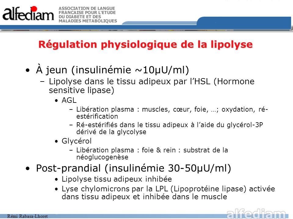 Rémi Rabasa-Lhoret Régulation physiologique de la lipolyse À jeun (insulinémie ~10µU/ml) –Lipolyse dans le tissu adipeux par lHSL (Hormone sensitive l