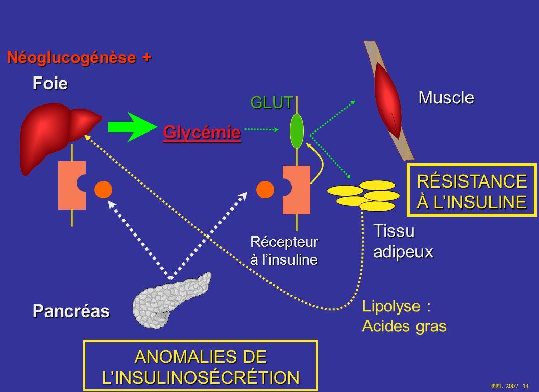 RRL 2007 14 Glycémie Foie Récepteur à linsuline Pancréas Muscle Tissuadipeux GLUT Lipolyse : Acides gras RÉSISTANCE À LINSULINE ANOMALIES DE LINSULINO