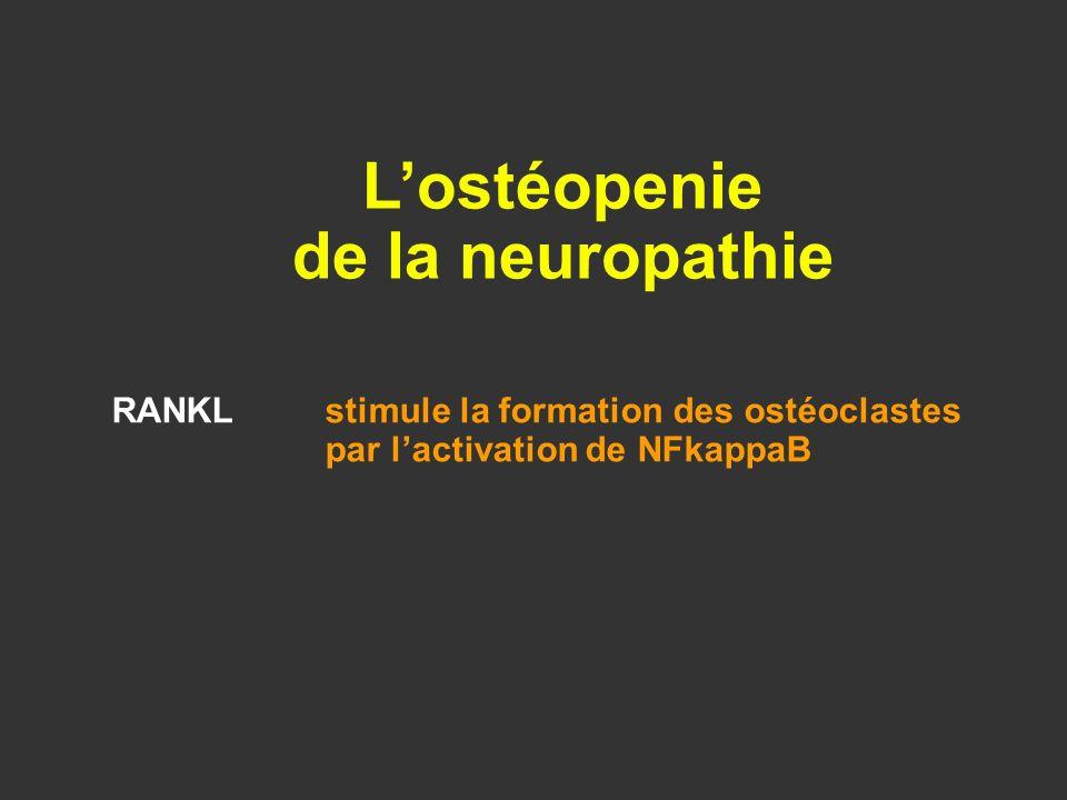 RANKLstimule la formation des ostéoclastes par lactivation de NFkappaB Lostéopenie de la neuropathie