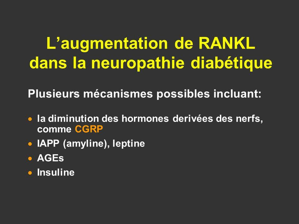 Laugmentation de RANKL dans la neuropathie diabétique Plusieurs mécanismes possibles incluant: la diminution des hormones derivées des nerfs, comme CG
