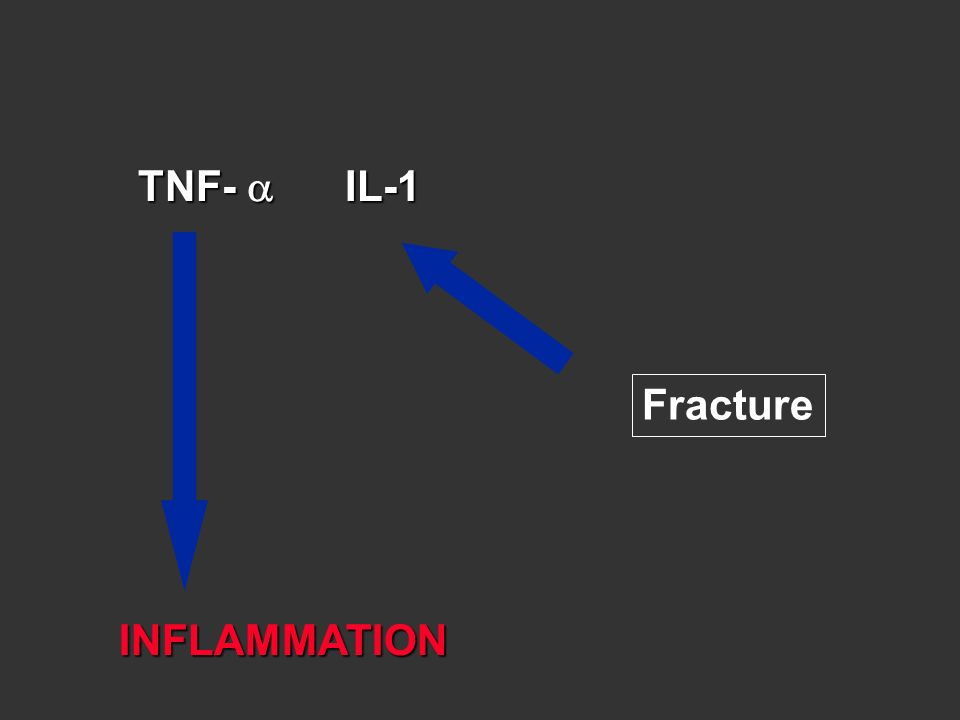 INFLAMMATION TNF- IL-1