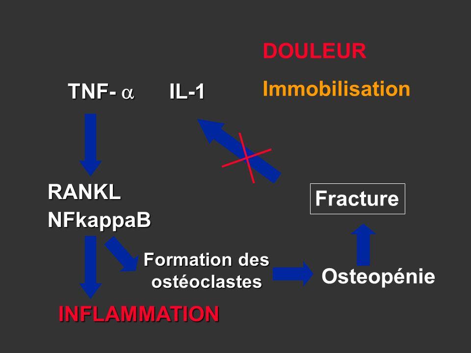 Fracture INFLAMMATION TNF- IL-1 RANKLNFkappaB Formation des ostoclastes Formation des ostéoclastes Osteopénie DOULEUR Immobilisation