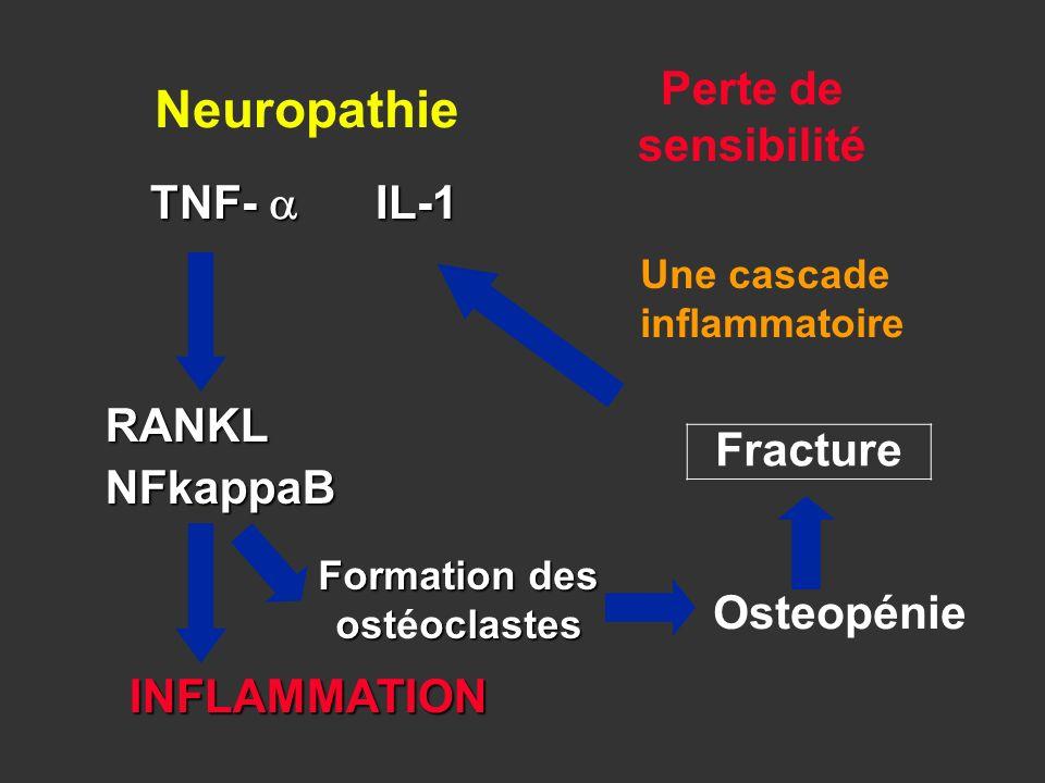 Fracture INFLAMMATION TNF- IL-1 RANKLNFkappaB Formation des ostoclastes Formation des ostéoclastes Osteopénie Perte de sensibilité Neuropathie Une cas