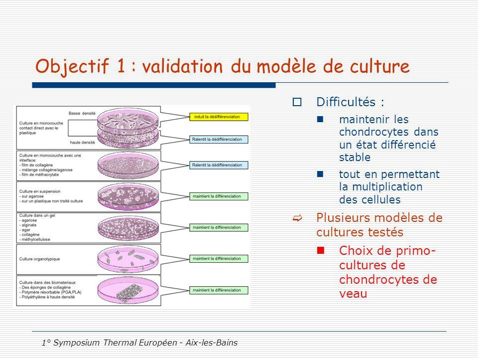 1° Symposium Thermal Européen - Aix-les-Bains Objectif 1 : validation du modèle de culture Difficultés : maintenir les chondrocytes dans un état diffé