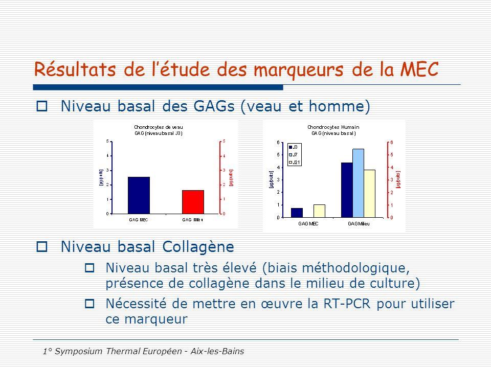 1° Symposium Thermal Européen - Aix-les-Bains Résultats de létude des marqueurs de la MEC Niveau basal des GAGs (veau et homme) Niveau basal Collagène