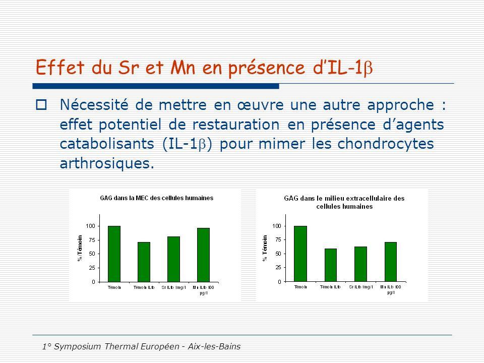 1° Symposium Thermal Européen - Aix-les-Bains Effet du Sr et Mn en présence dIL-1 Nécessité de mettre en œuvre une autre approche : effet potentiel de