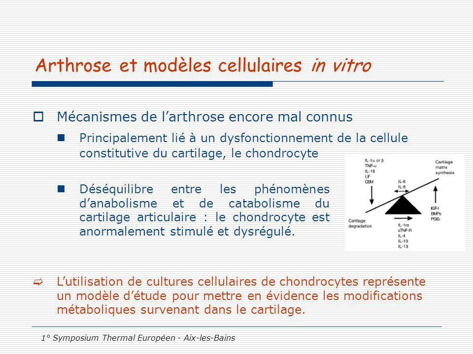 1° Symposium Thermal Européen - Aix-les-Bains Arthrose et modèles cellulaires in vitro Mécanismes de larthrose encore mal connus Principalement lié à