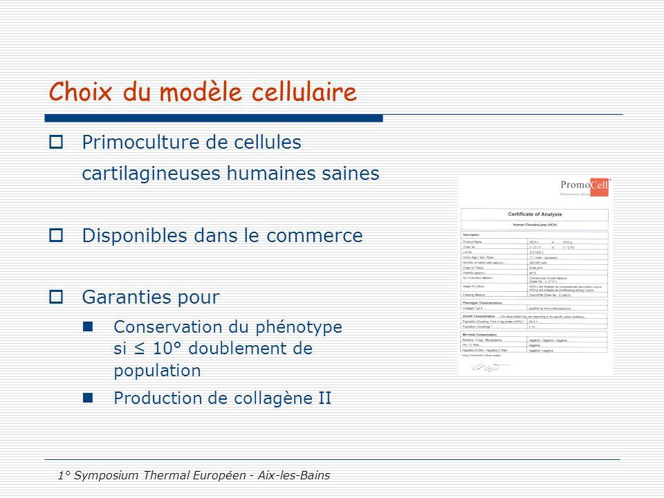 1° Symposium Thermal Européen - Aix-les-Bains Choix du modèle cellulaire Primoculture de cellules cartilagineuses humaines saines Disponibles dans le