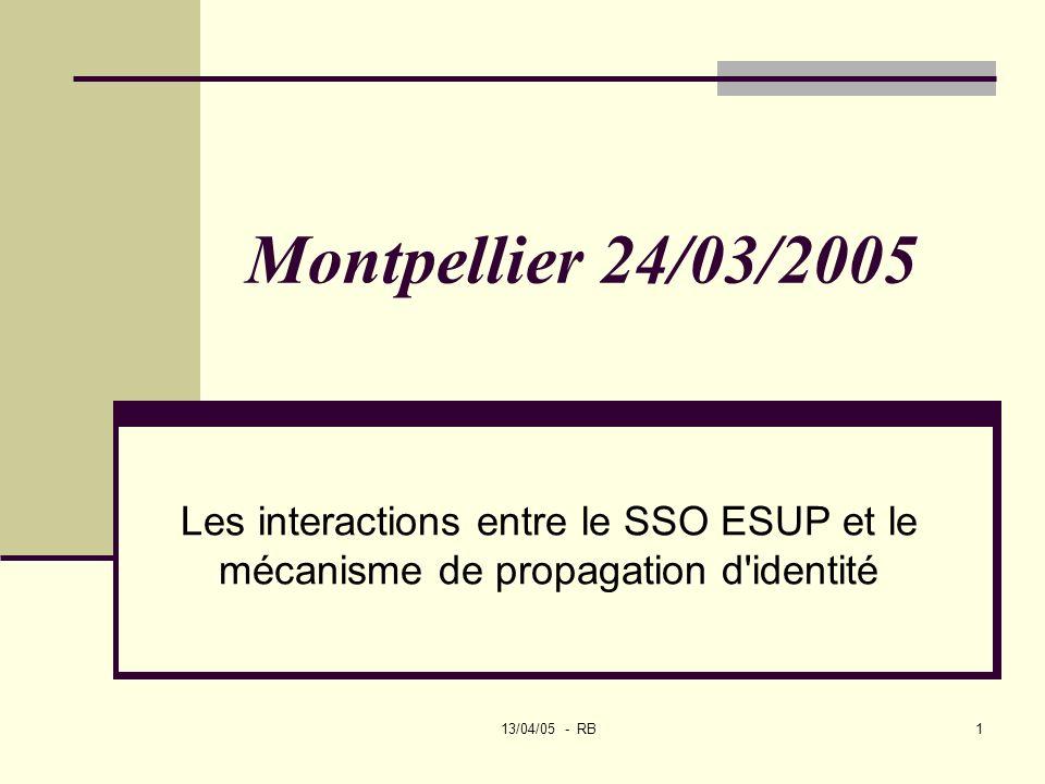 13/04/05 - RB1 Montpellier 24/03/2005 Les interactions entre le SSO ESUP et le mécanisme de propagation d identité