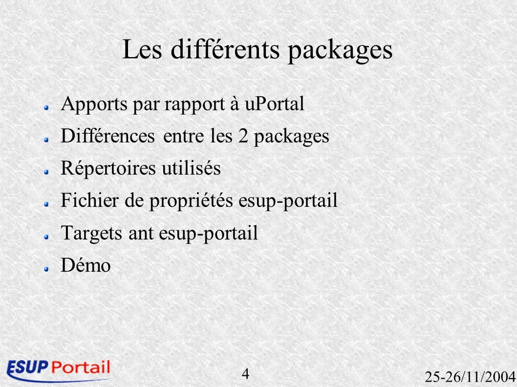 5 25-26/11/2004 Apports par rapport à uPortal Ajout de librairies Authentification CAS possible Environnement esup-portail Skin esup-portail SGBD nettoyé.