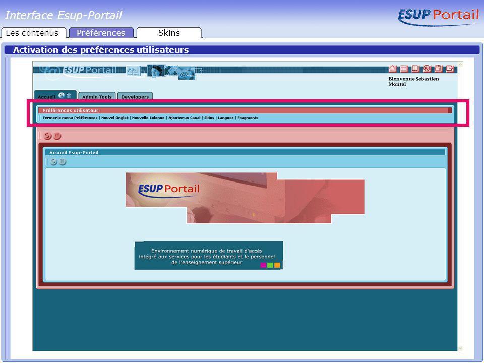 Interface Esup-Portail Activation des préférences utilisateurs Les contenusPréférencesSkins