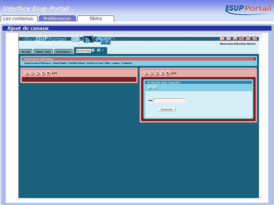 Interface Esup-Portail Choix dun Skin Les contenusPréférencesSkins