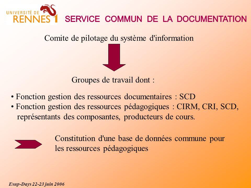 Comite de pilotage du système d information Groupes de travail dont : Fonction gestion des ressources documentaires : SCD Fonction gestion des ressources pédagogiques : CIRM, CRI, SCD, représentants des composantes, producteurs de cours.