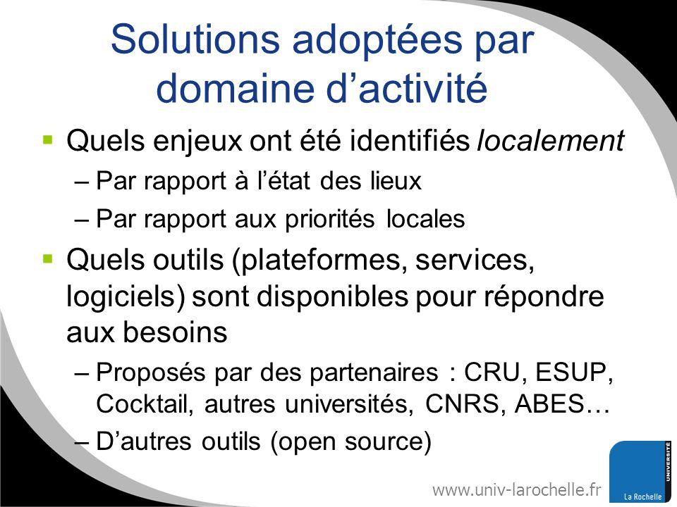 www.univ-larochelle.fr Solutions adoptées par domaine dactivité Quels enjeux ont été identifiés localement –Par rapport à létat des lieux –Par rapport