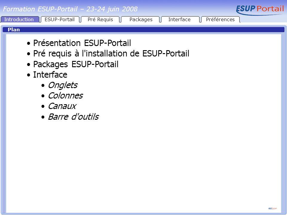 IntroductionESUP-PortailPré RequisPackages Architecture globale LDAP Apache Tomcat CAS Apache Tomcat uPortal 1 2 SGBD 4 3 4 InterfacePréférences Formation ESUP-Portail – 23-24 juin 2008