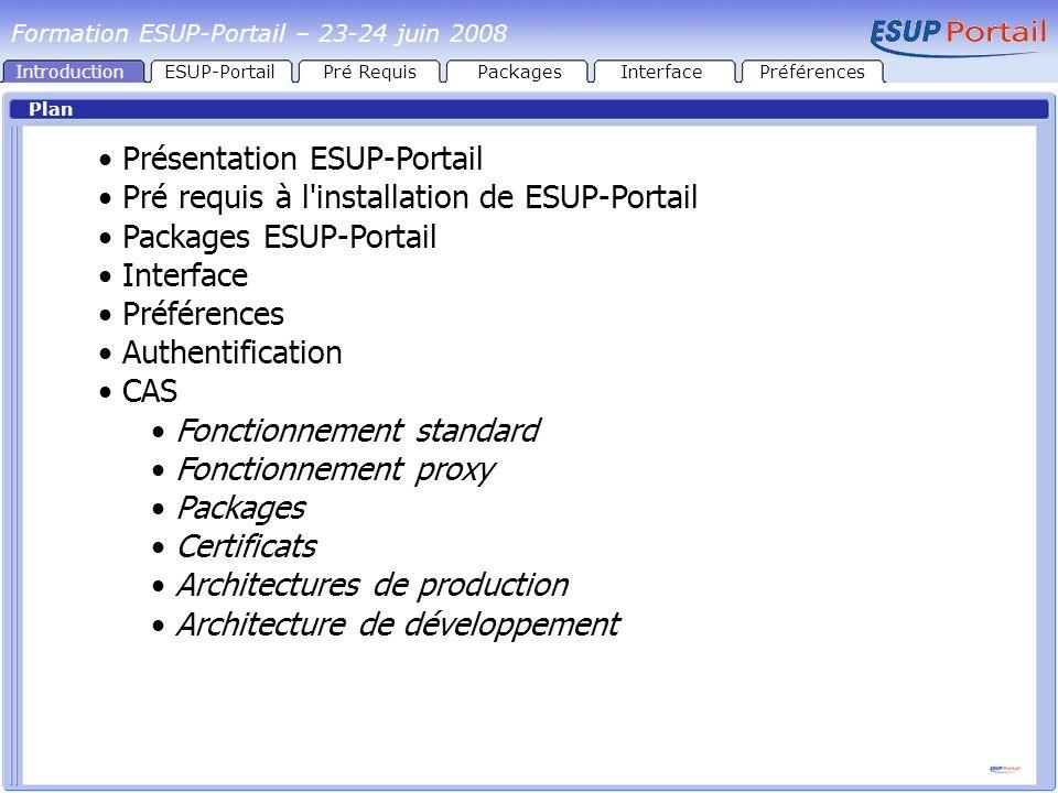 CAS Fonctionnement standard CASPortail Navigateur HTTPS Formulaire d authentification GroupesCanauxEnvironnementPrésentation Authentification Formation ESUP-Portail – 23-24 juin 2008