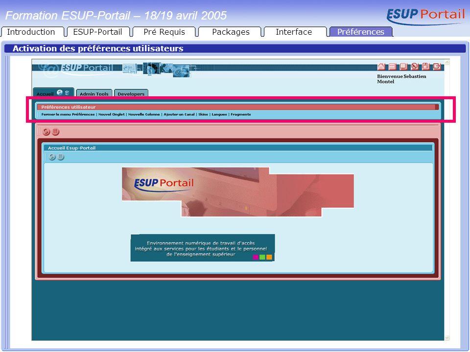 Préférences Formation ESUP-Portail – 18/19 avril 2005 Activation des préférences utilisateurs IntroductionESUP-PortailPré RequisPackagesInterface