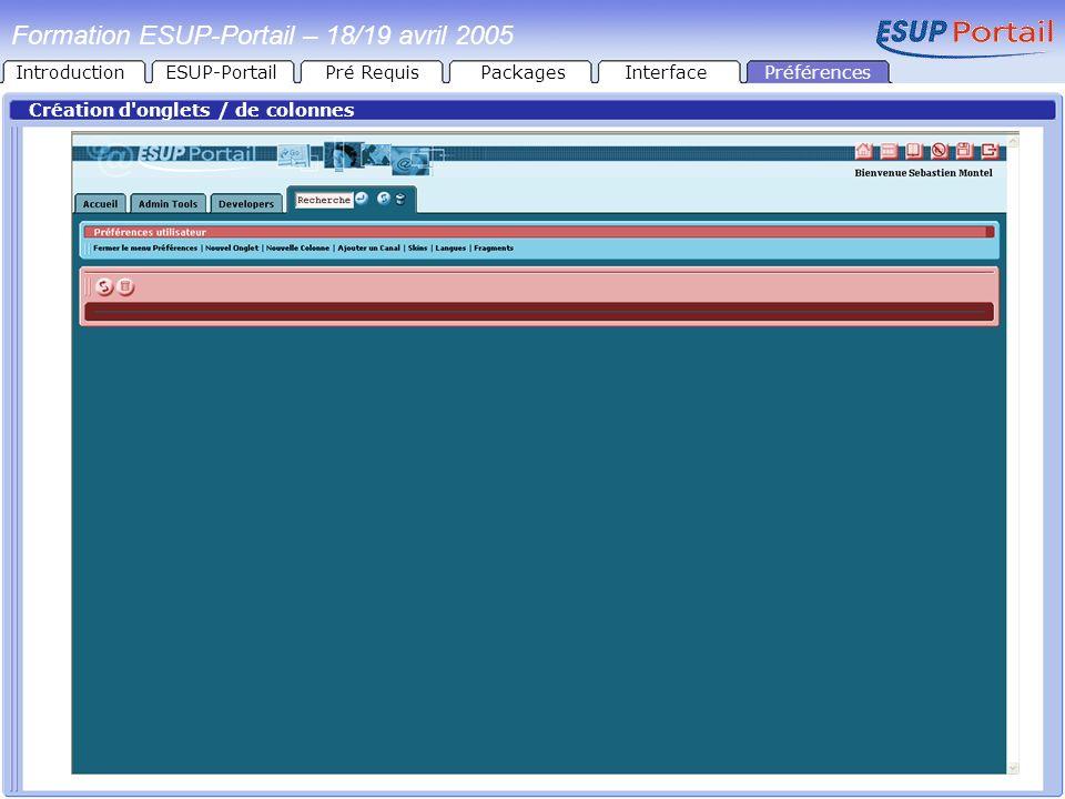 Formation ESUP-Portail – 18/19 avril 2005 Création d'onglets / de colonnes PréférencesIntroductionESUP-PortailPré RequisPackagesInterface