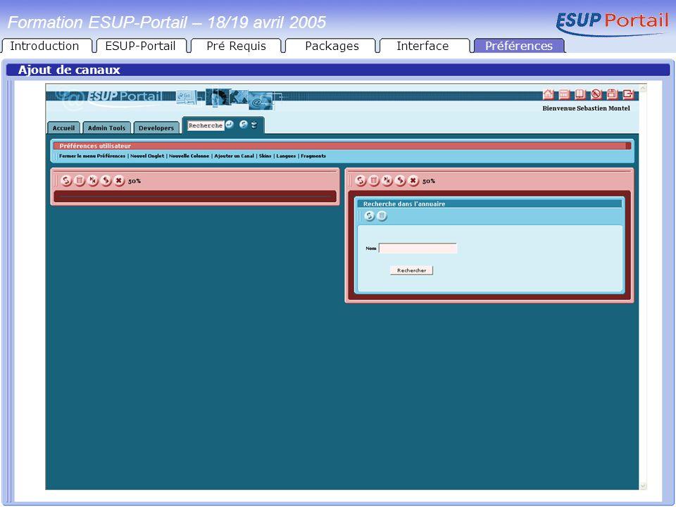 Formation ESUP-Portail – 18/19 avril 2005 Ajout de canaux PréférencesIntroductionESUP-PortailPré RequisPackagesInterface