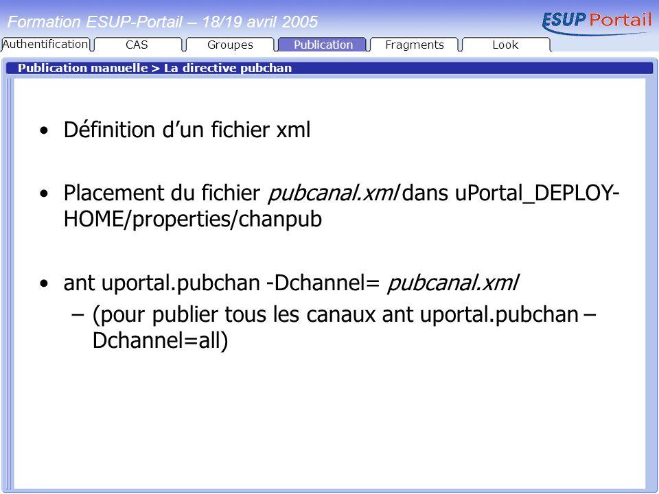 PublicationFragmentsLook Formation ESUP-Portail – 18/19 avril 2005 Publication manuelle > La directive pubchan Définition dun fichier xml Placement du