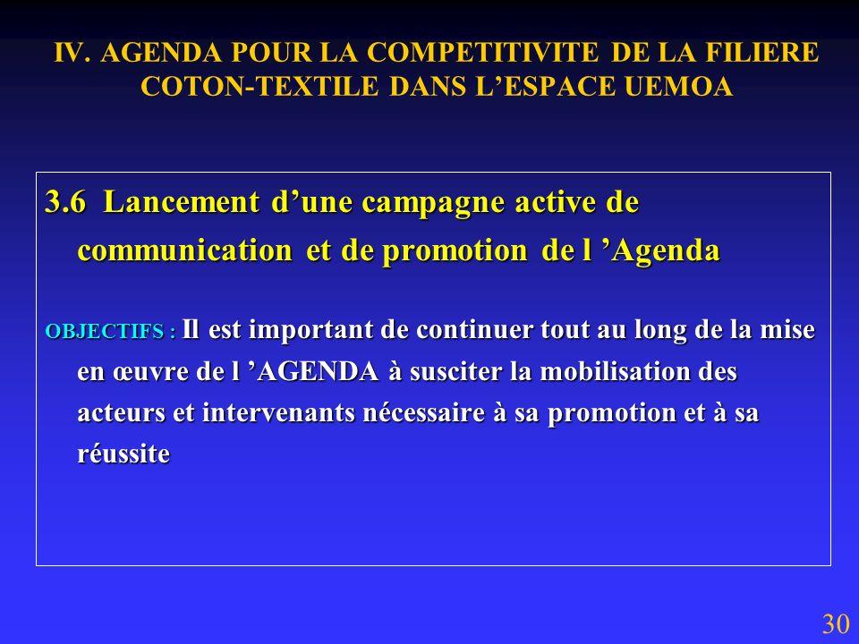 IV. AGENDA POUR LA COMPETITIVITE DE LA FILIERE COTON-TEXTILE DANS LESPACE UEMOA 3.5 Mise en place dun dispositif régional de centres techniques textil